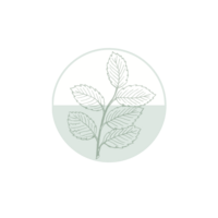Mint Leaf Logo No Background 2