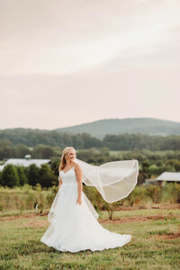 virginiaweddingphotographer-6011