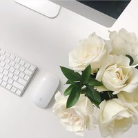 white desktop with computer and white roses