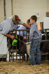 Jeffries Livestock Marketing_2019 Pueblo County Fair_Around the Fair-434