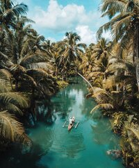 Image of tropical jungle and water through the middle.  Copywriter NZ