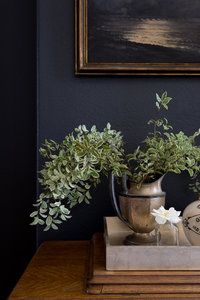 Black wall, silver pitcher on a side table with greenery