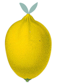 lemon_logo