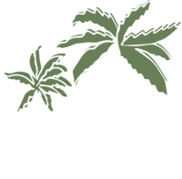 HAIRMVMT_design_palms_white