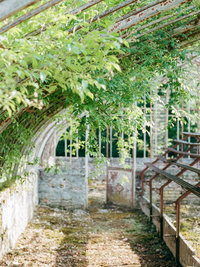 french-garden-photo