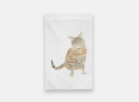 Cat-House-Flag-The-Welcoming-District