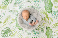 newborn boy swaddled in grey against a backdrop of jungle leaves
