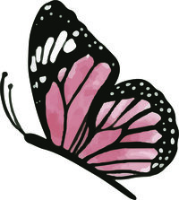 black outlined butterfly