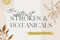 A graphic with a title, brush stroke, rainbow, and illustrated leaves.