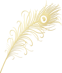 Gold Foil Peacock & Feathers ClipArt (21)