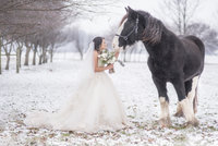 Indianapolis-wedding-photographer-bride-snow-horse
