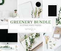 Springs & Co. - Greenery Bundle