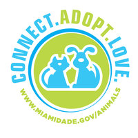 Make a donation to the miami-dade animal shelter