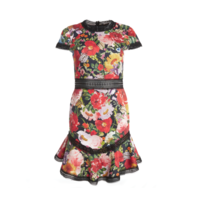 ALICEANDOLIVIADRESS