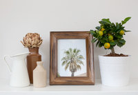 pretty-prints-palm-tree