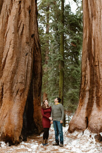 WORK-SequoiaNationalParkEngagementSession.WildflowerPhotoCo