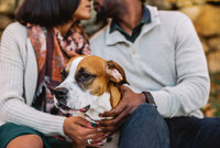 Mei Lin Barral Photography_Dog Engagement