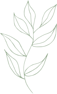 Fleurir Online Leaf Illustration