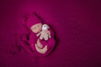 Newborn photography in Phoenixville