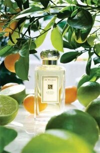 jo-malone------lime-basil---mandarin_2_medium