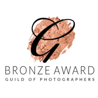 guild-of-photographers-bronze-award