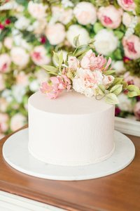 classy-blush-morgantown-west-virginia-wedding