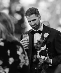 PET CARE ON WEDDING DAY