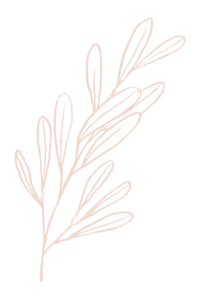 hand drawn branch