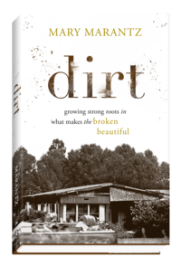 Dirt_book_cover_3D