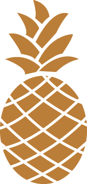 pineapple south and palm brand design studio