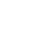 Flower 2 PNG
