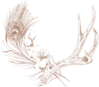 F&F_Antlers 3