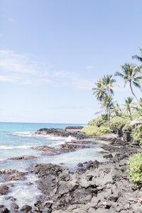 Charlotte Wedding Photographer | Heather Yvonne | Hawaii scenery, rocky shore line with palm trees