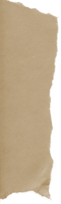 Brown Paper Tear 06