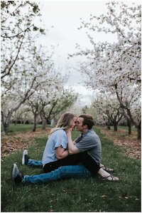 Newly engaged couple sitting together in a orchard of blooming trees kissing in nashville springtime couple session