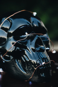 Skull-Halloween-Detroit-Michigan-lifestyle-ChettaraTPhotography-6202