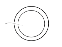 Dreamcatcher Studios - Logo black circle only
