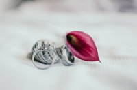 Bride and Groom rings pictured with a red leaf