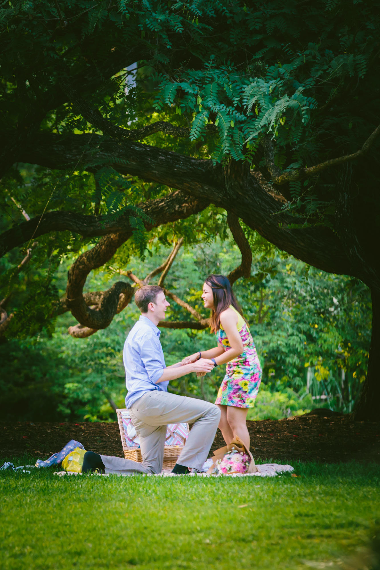 Brisbane City Botanical Gardens Proposal Photographer Anna Osetroff