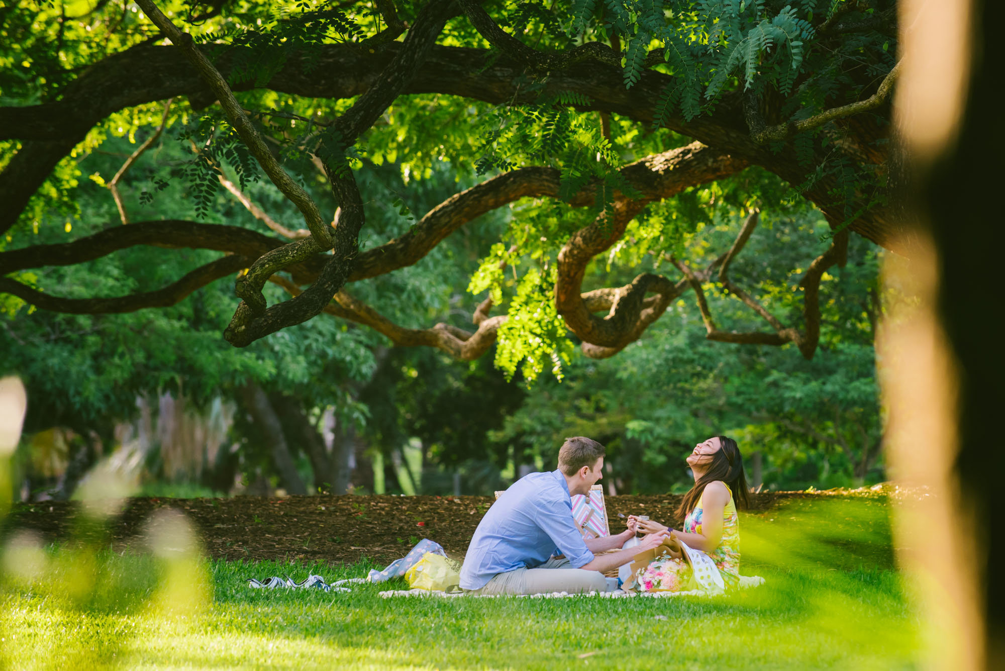 Afternoon Brisbane City Botanical Gardens Proposal Photographer Anna Osetroff