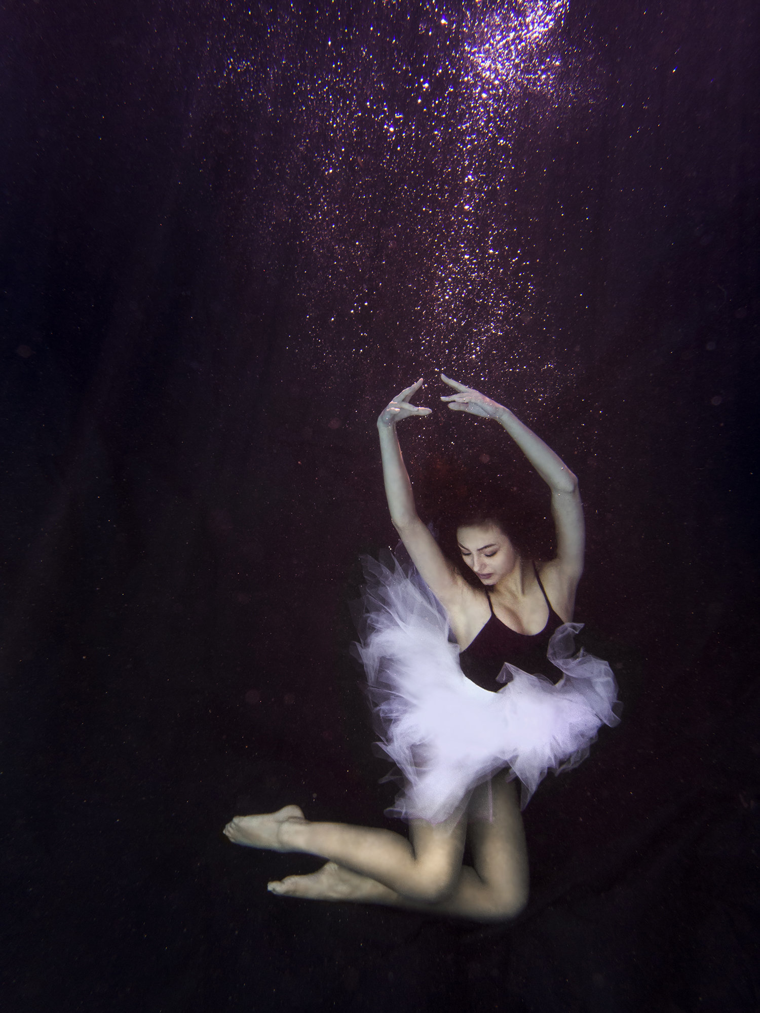 underwater portrait photographer tampa bay florida