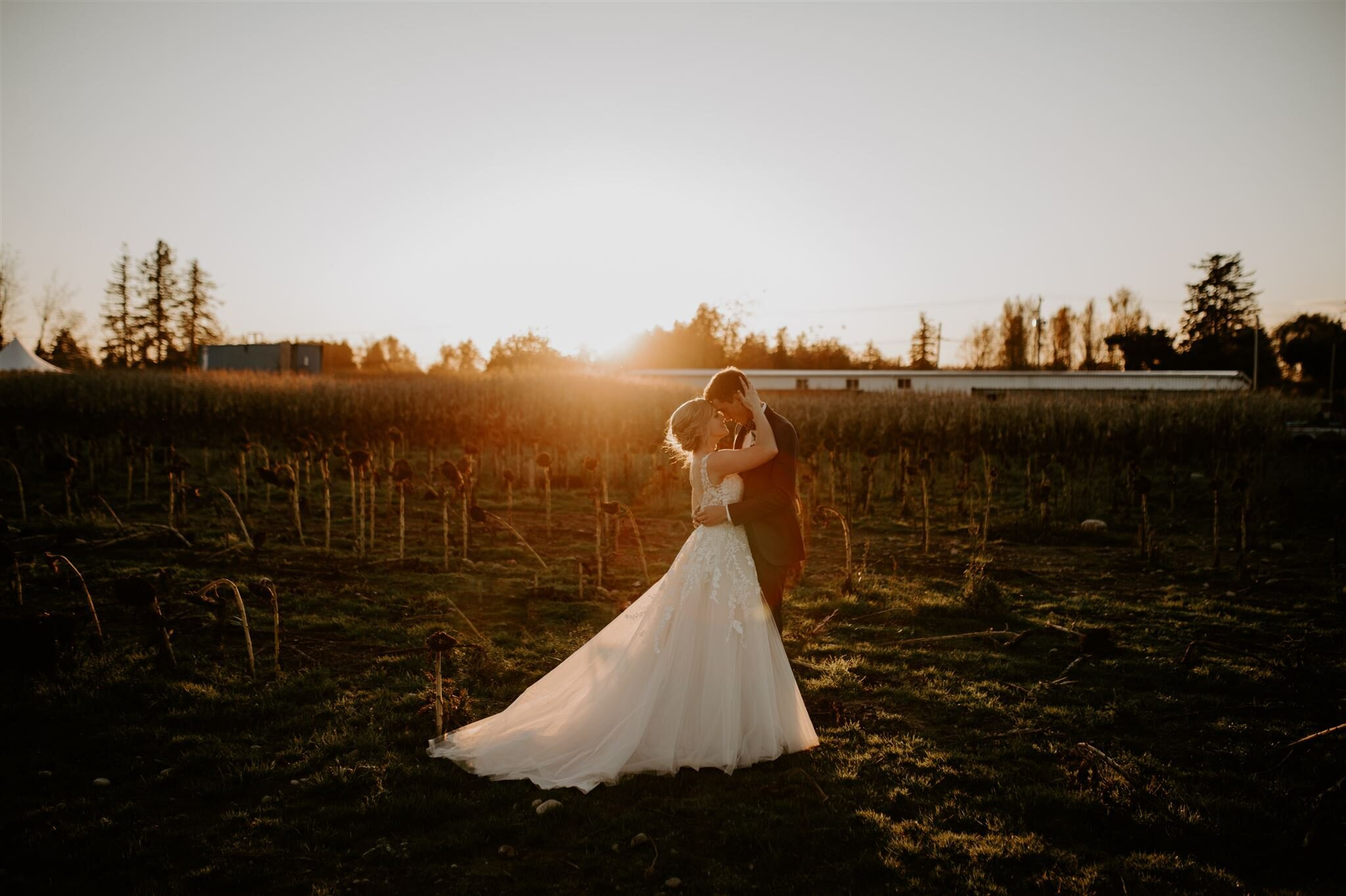 ashley+alex-maan-farms-mirandandersonphoto-120_websize
