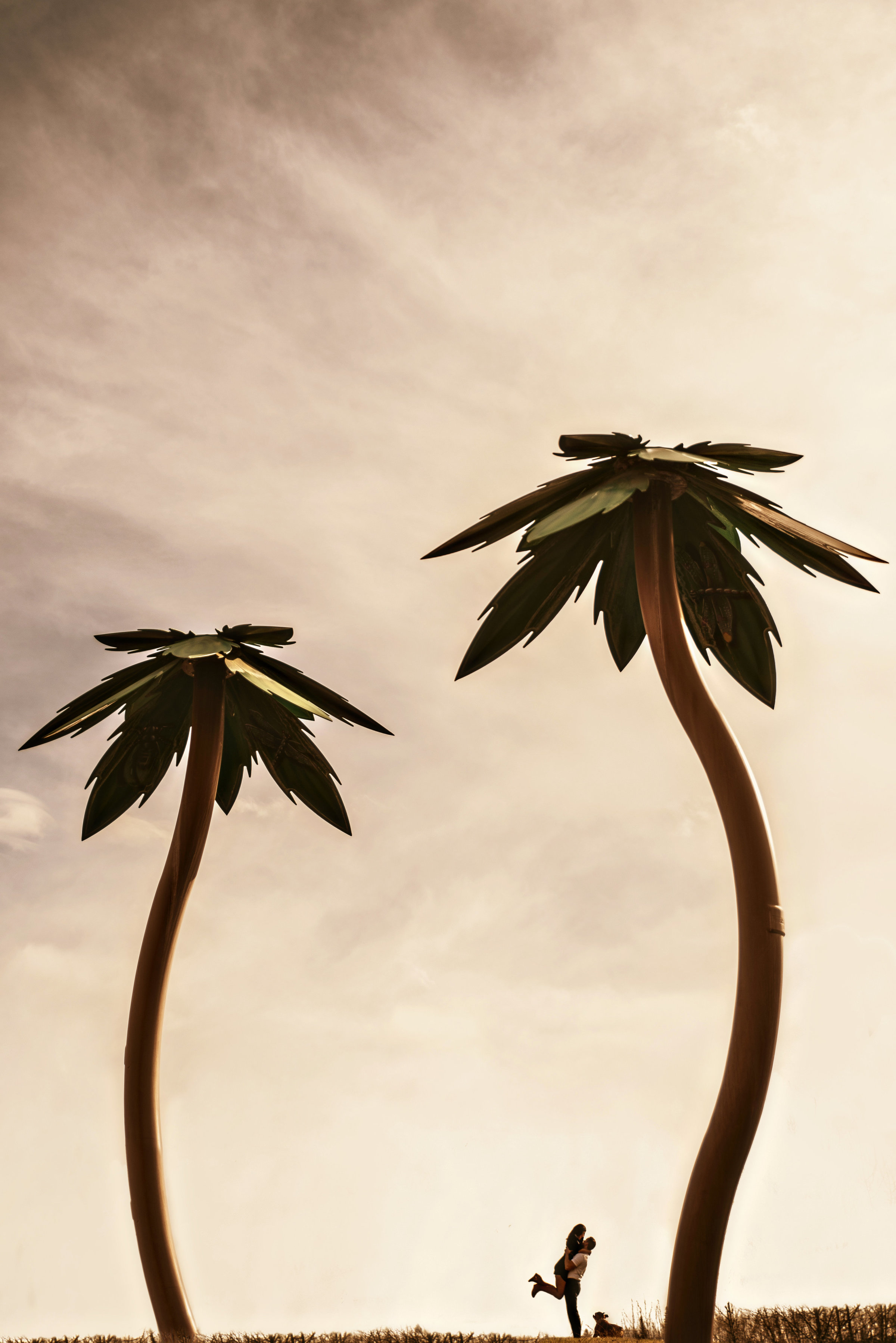 Couple silhouette with palm trees