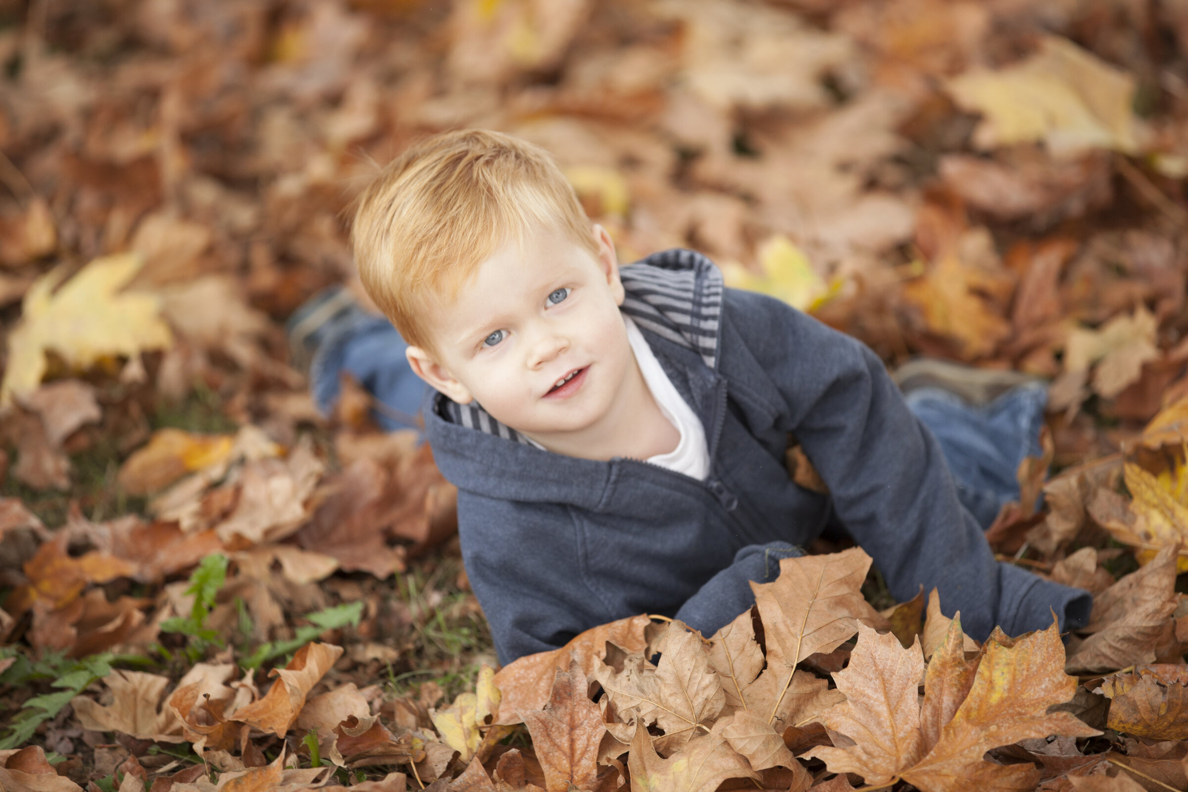 seattle photography boy in autumn leaves portrait photo