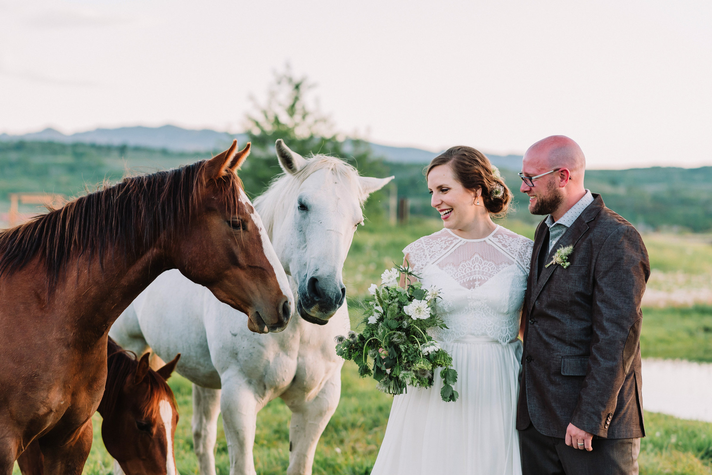 bride and groom with horses at diamond cross ranch