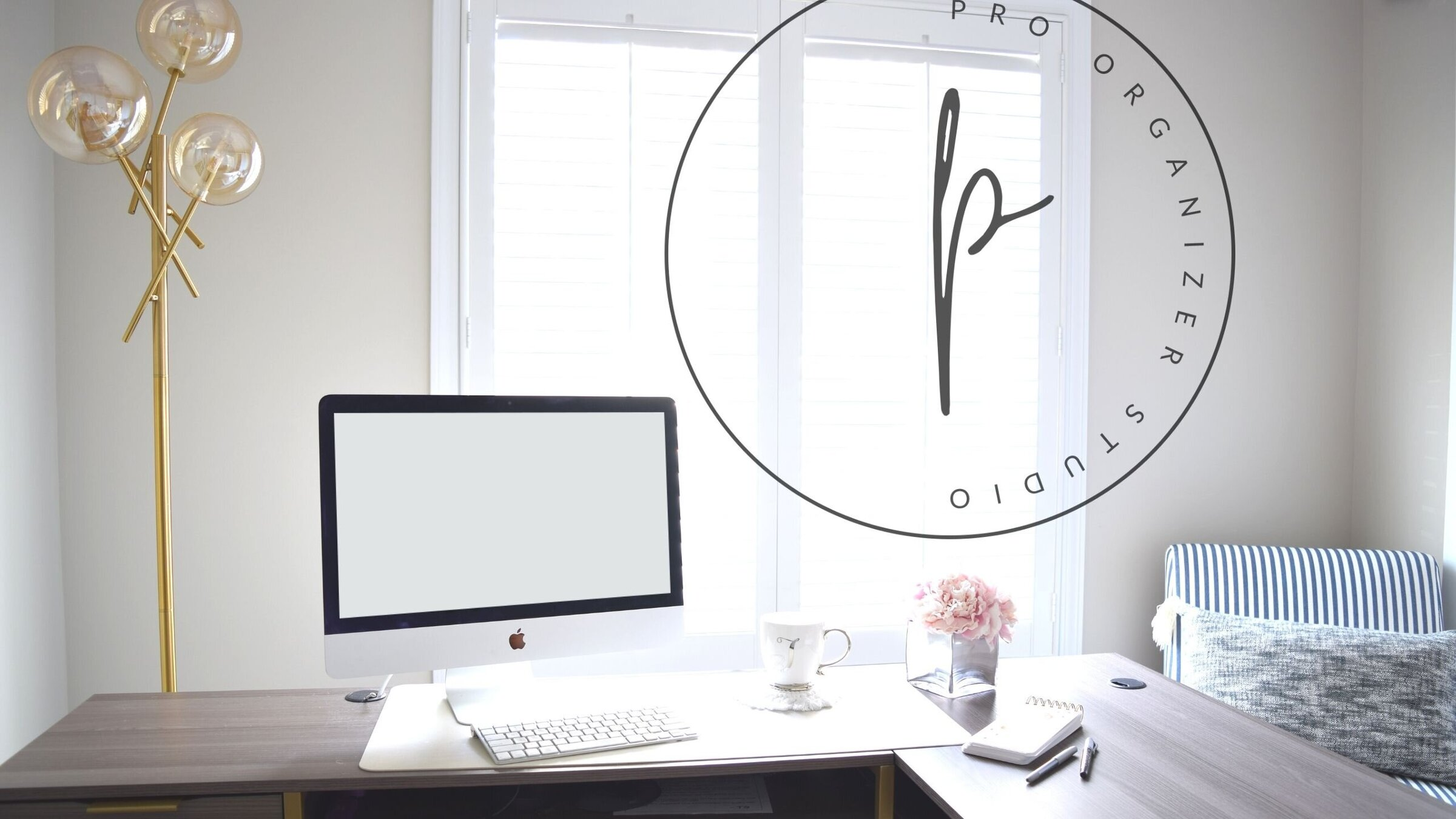 start an organizing business with pro organizer studio