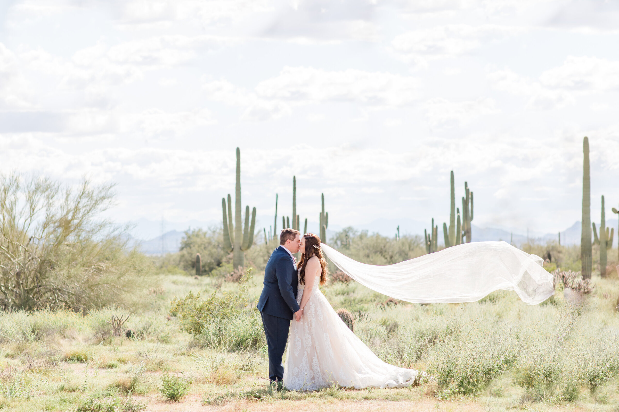 Bride and groom standing in the desert with veil flying in the wind