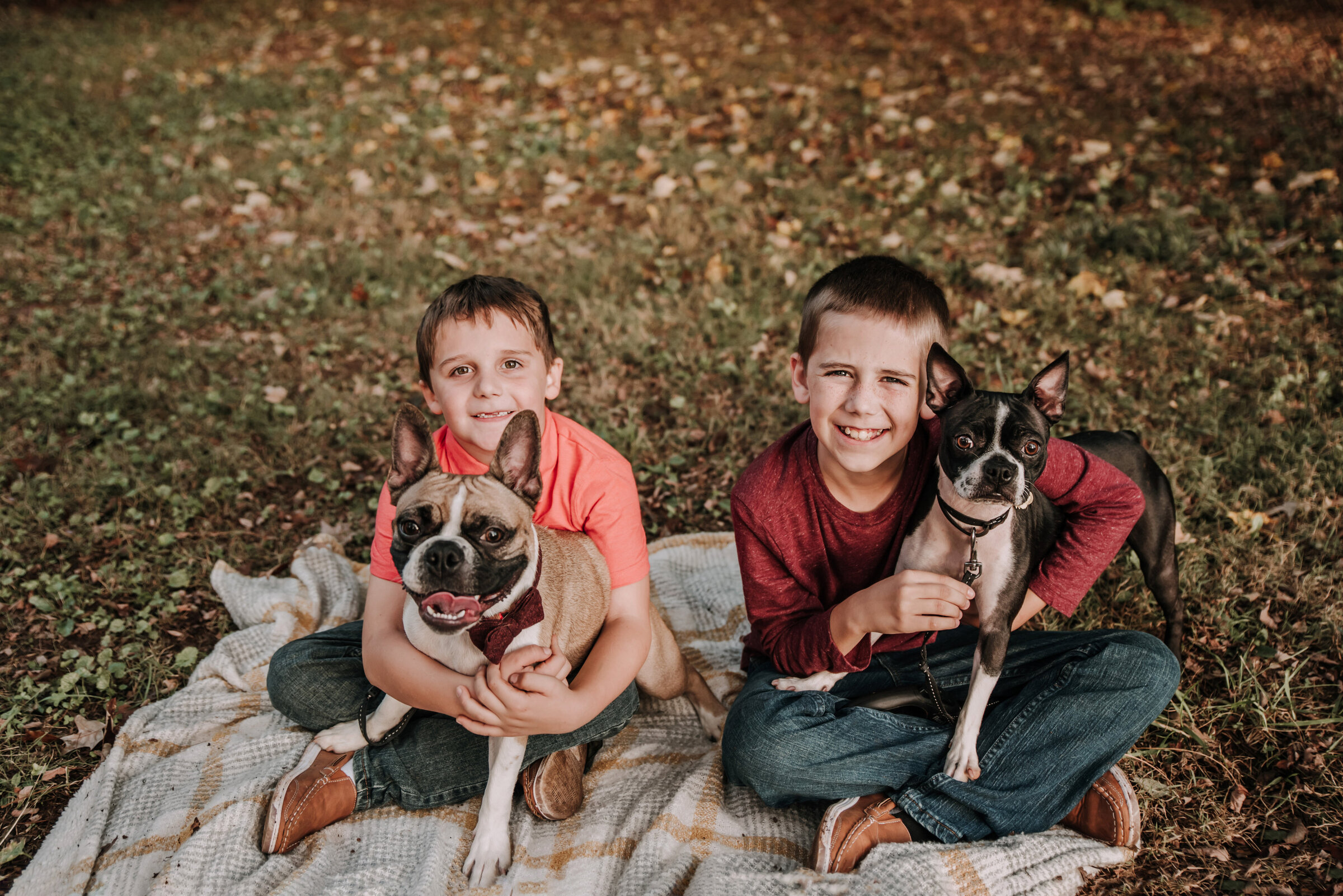 knoxville-pet-photographer