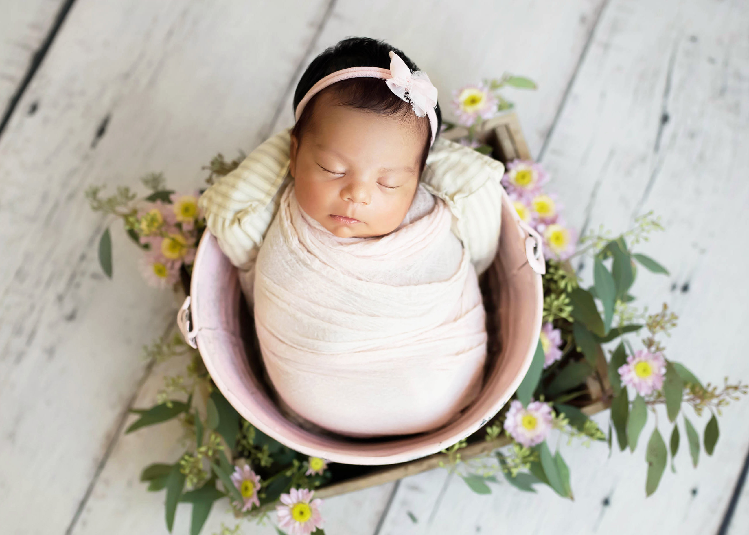 Newborn Daisy Session
