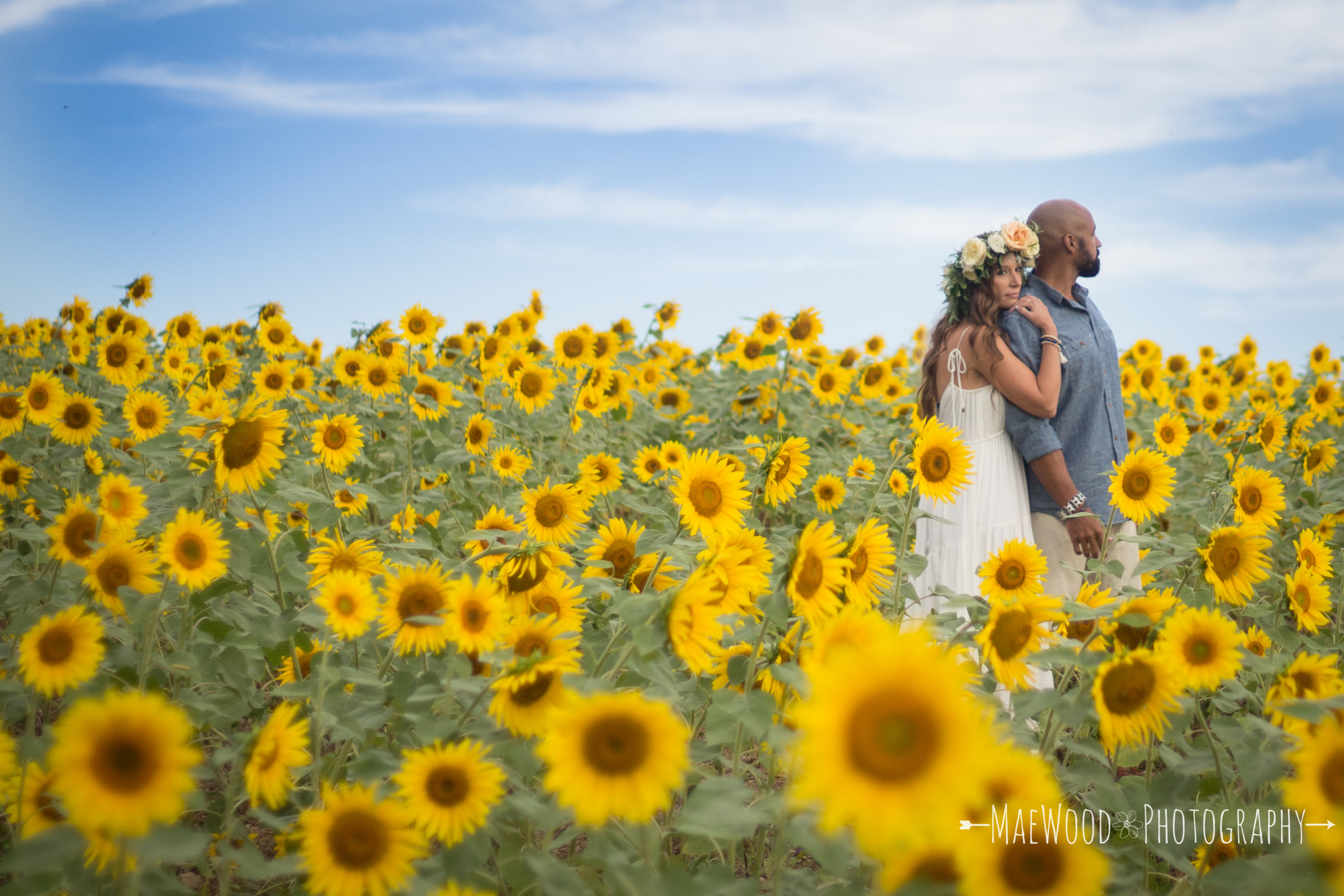 Husband and Wife in the Sunflower Field